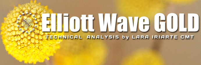 Elliott Wave Gold Review